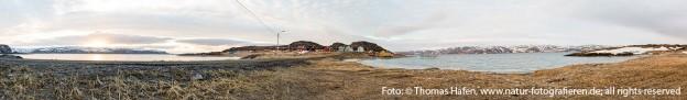 Am Kongsfjord Thomas Hafen